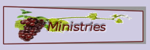 Learn more about NTV ministries